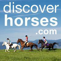 DiscoverHorses.com logo
