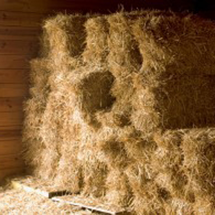 Winter Hay Storage
