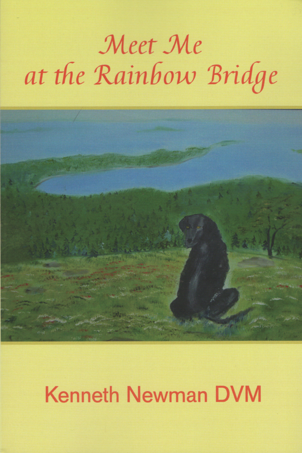 Meet Me at the Rainbow Bridge, by Kenneth Newman, DVM
