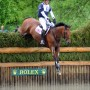 William Fox Pitt. Photo Nancy Jaffer