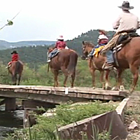 Video: AQHA Trail Riding Program