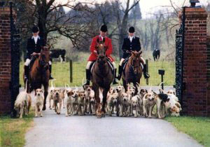 Foxhunting. Courtesy MFHA