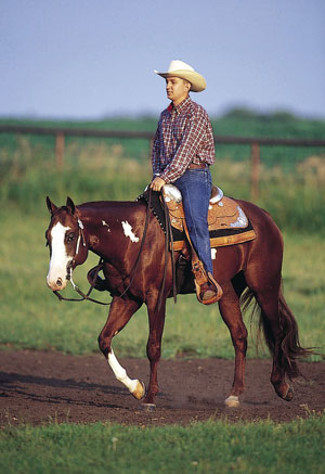 Fox Meadows Farm ~Open and Accepting!~ Western-Riding