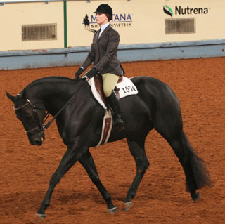 Jessica Johnson in traditional gear for hunter seat equitation. Journal photo