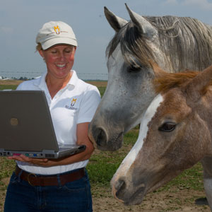 Online Course: Purchasing and Owning a Horse 101