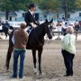 Courtney King plans her show strategy at the 2006 Dressage at Devon. Photo by Patricia Lasko