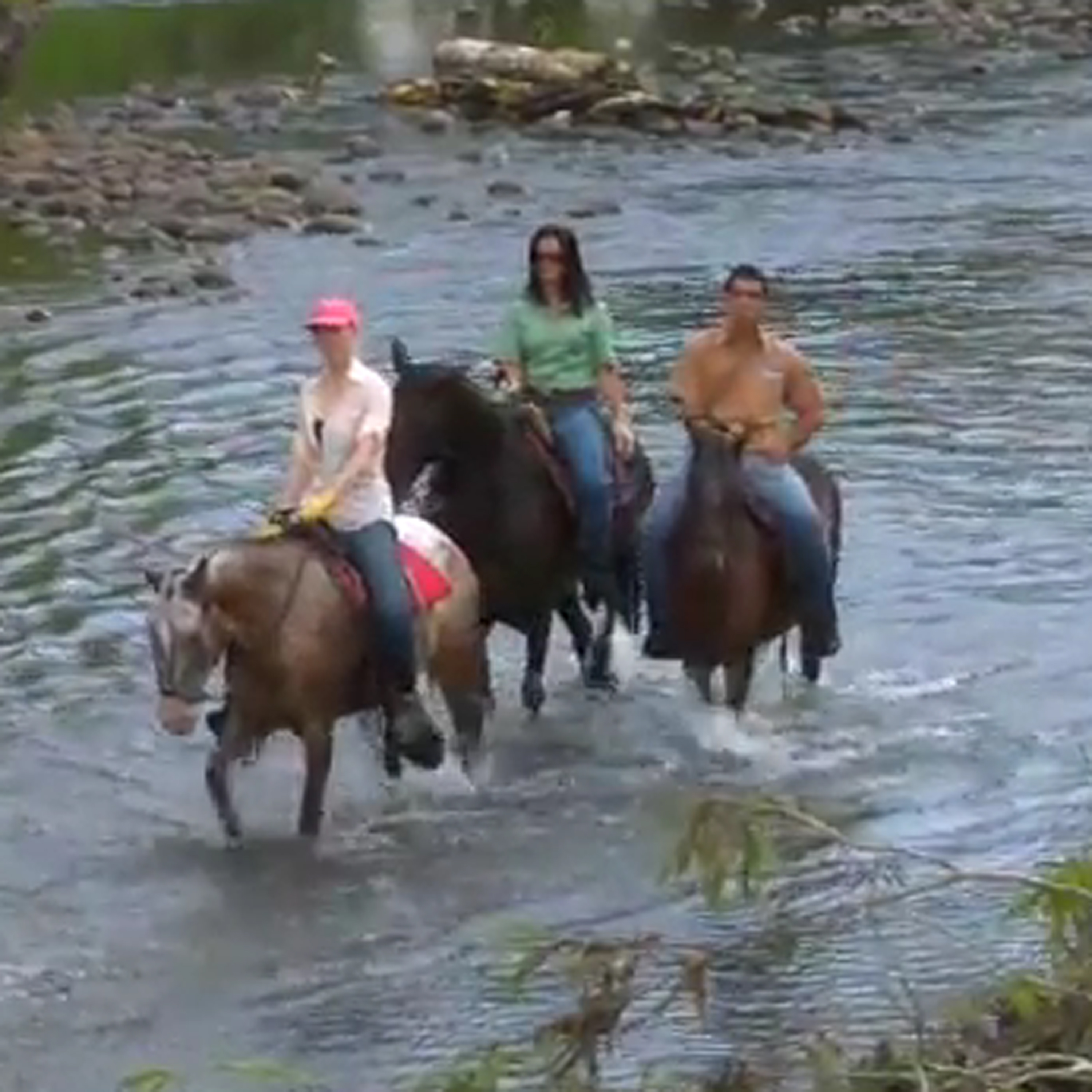 Video: Tour San Carlos, Costa Rica on Horseback