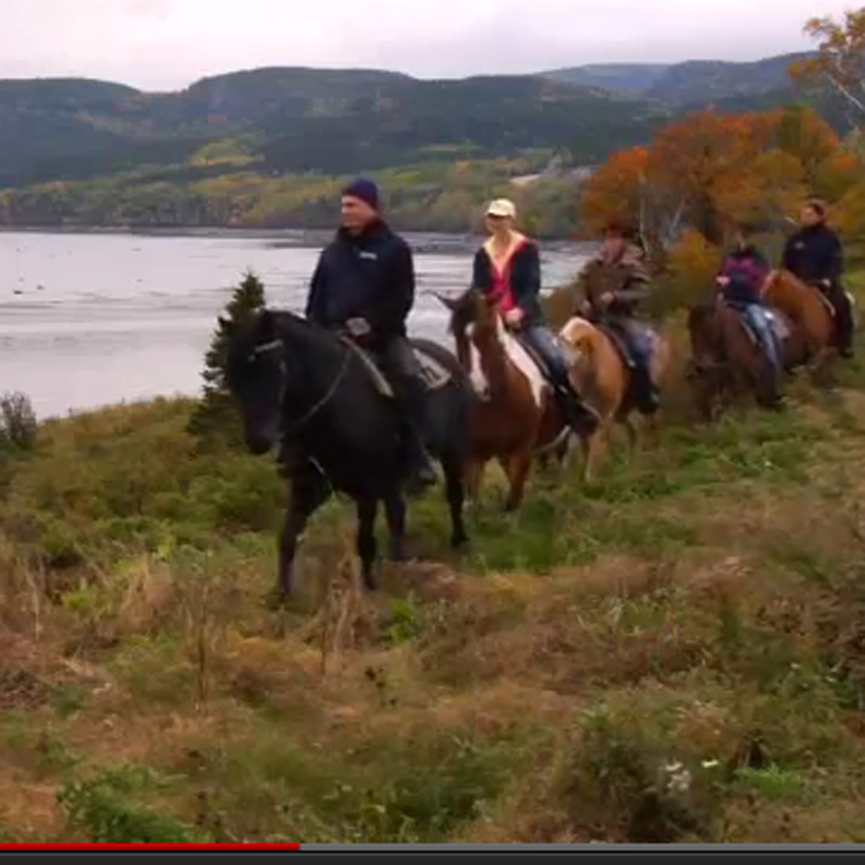 Video: Charlevoix Horse Riding Quebec