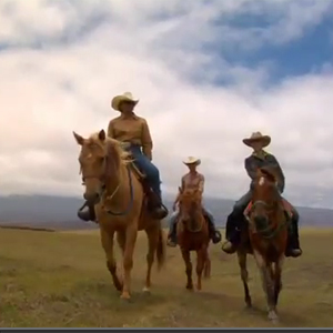 Video: Hawaii Horseback Riding and Cowboy History