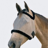 Horse with fly mask
