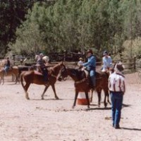Horse games at Drowsy Water Ranch. Journal photo