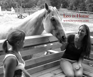 Stolen Horse International Fundraiser on eBay Ends December 10