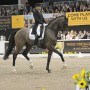 Steffen Peters and Legolas. Photo Nancy Jaffer