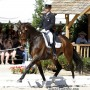 Steffen Peters and Legolas 92. Photo Susan Stickle