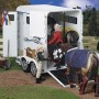 Three Horse Travel Tips