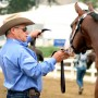 Traveling safely with a weanling takes some preparation, but it is worth it to keep your baby safe. Journal photo.
