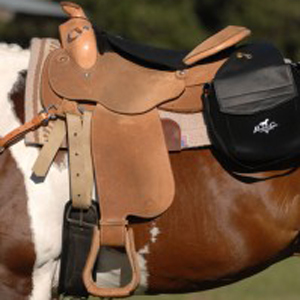 Horse Tack Check with Lynn Palm