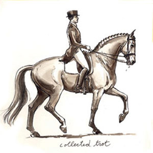 Collected Trot. Drawing by Sandy Rabinowitz. Courtesy Dressage Today