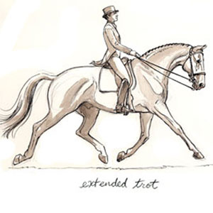 Extended Trot. Drawing by Sandy Rabinowitz. Courtesy Dressage Today