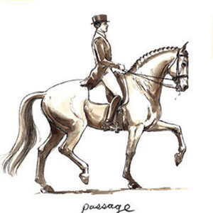 Passage. Drawing by Sandy Rabinowitz. Courtesy Dressage Today