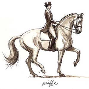 Piaffe. Drawing by Sandy Rabinowitz. Courtesy Dressage Today