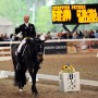 worlddressagemasters2NJ