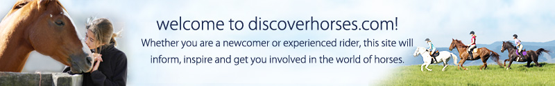 Welcome to DiscoverHorses.com!